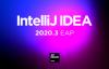无限重置IDE过期时间插件 亲测可以使用