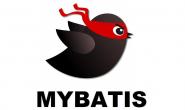 Mybatis 框架下 SQL 注入攻击的 3 种方式
